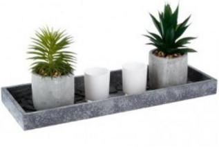 1-plateau-bois-plantes